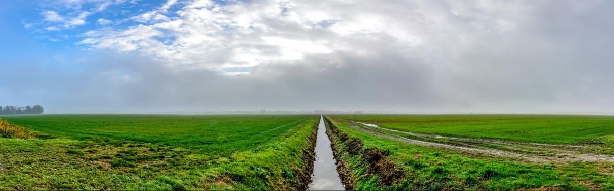 Foto van een polderlandschap.